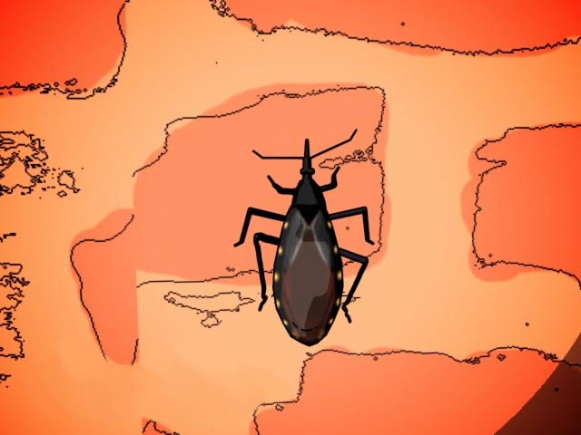 Prevention of Chagas Disease