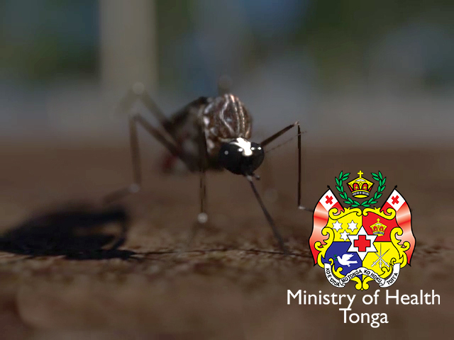 Dengue Prevention: Variant for Tonga