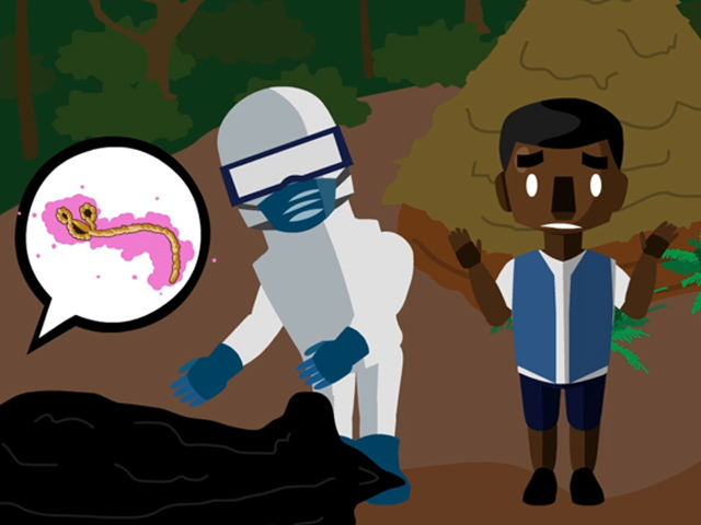 How to Prevent the Spread of Ebola